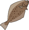 halibut.png