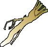 horseradish.png