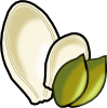 pumpkin_seeds.png