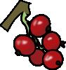 redcurrants.png