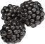 Blackberries, raw